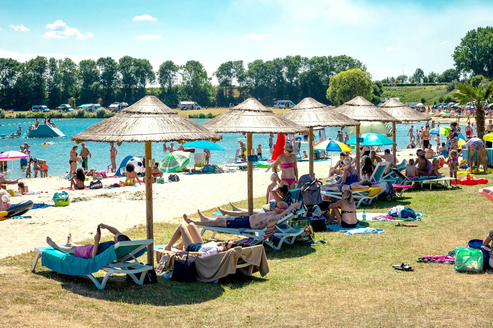 Area-X_De-Weerd-Dagstrand_Palm-Beach-Roermond-2lichter