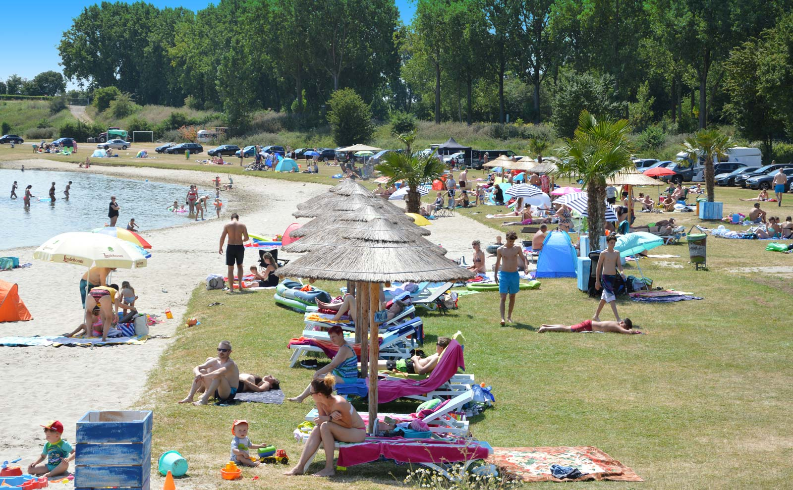 Dagstrand-en-beachclub-PalmBeachRoermond-AreaX-De_Weerd_Noordplas_Roermond